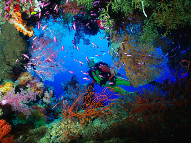 определение экспозиции под водой