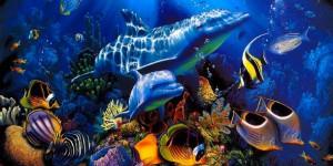 Техника подводной фотосъёмки