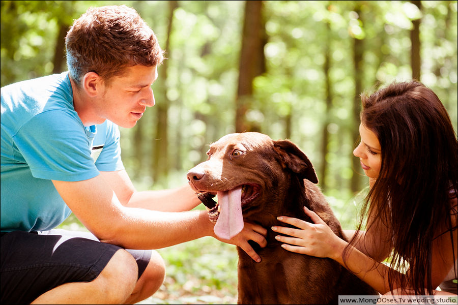 Любимая собака Вероники и Давида