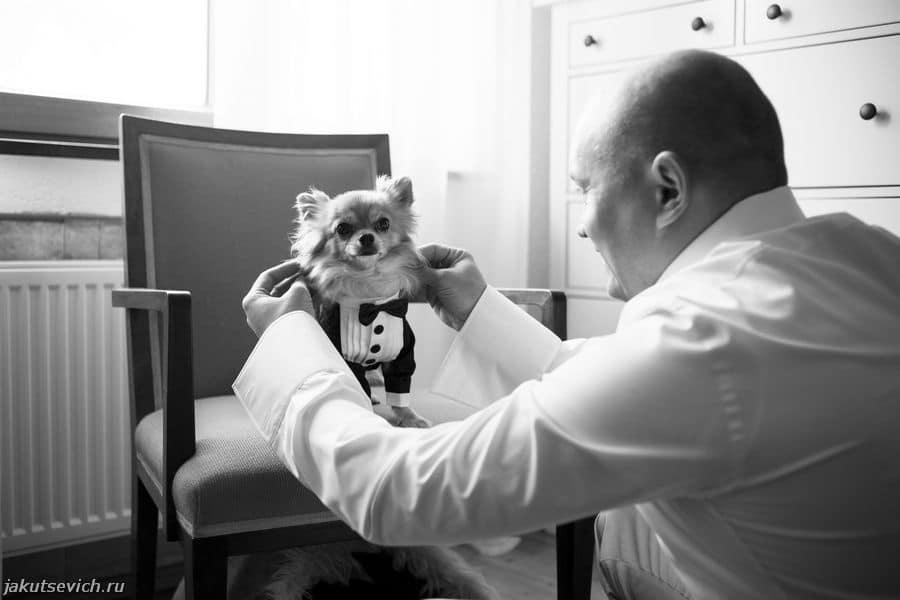 Русская свадьба в германии - фотограф за границей Артур Якуцевич