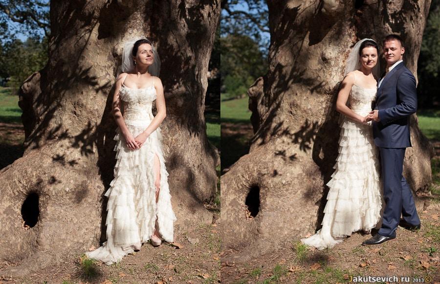 Свадебное платье Ани от бренда Papilio