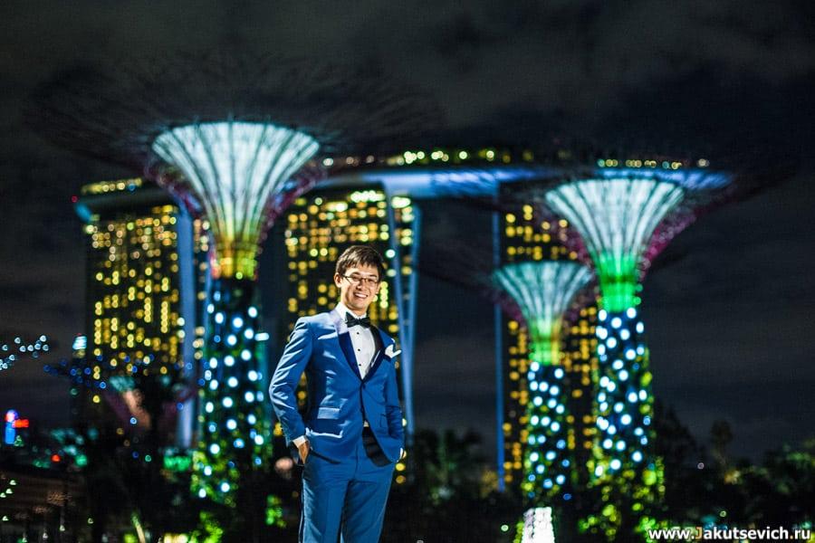 Сингапур архитектура фото