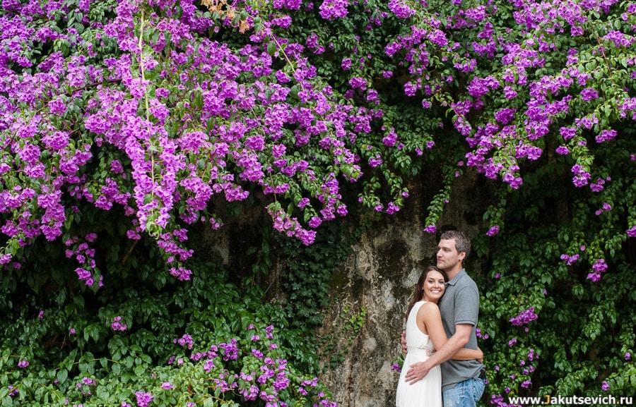 Цветы в Риме