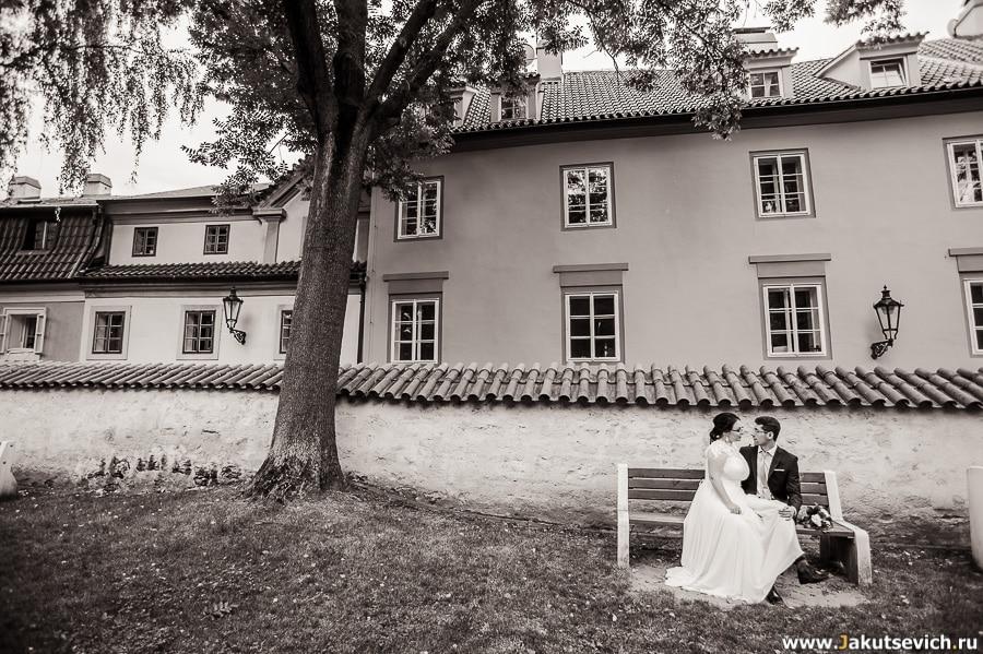 Пражские свадьбы