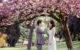 Свадебная фотосессия в Риме в апреле