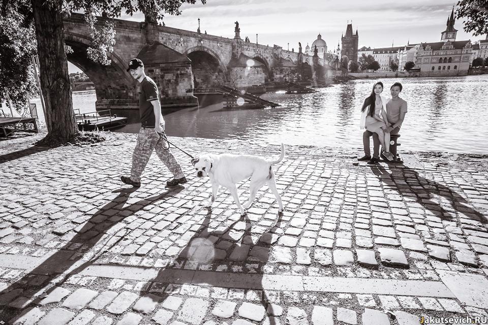 Карлов Мост в Праге фотосессия